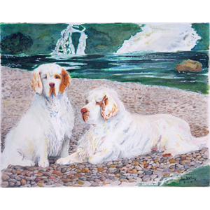 Pebble Beach Pair of Clumber Spaniels on a river beach by Jan Irving